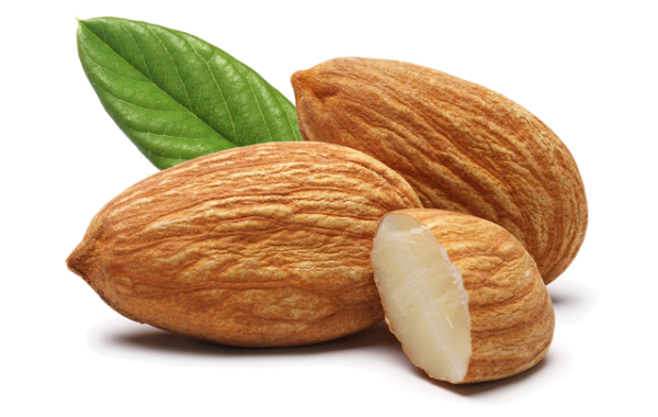 andalucia nuts - almonds-leaf_trasp