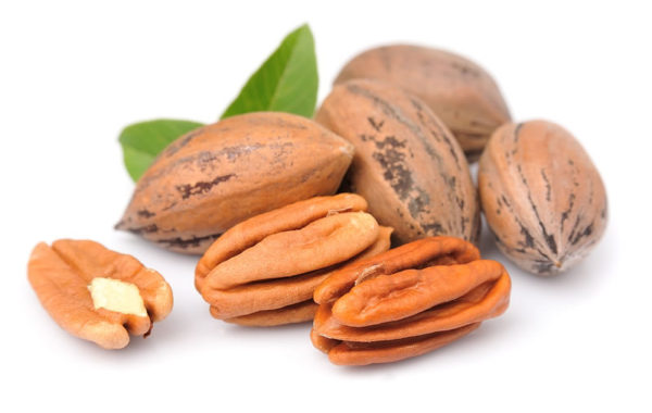 andalucia-nuts-pecans-leaf